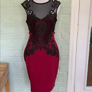 NWT Lipsy berry lace app mesh dress US8